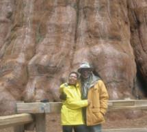 Presidio to Yosemite Pilgrimage honors Buffalo Soldiers legacy