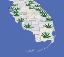 Marijuana business names blooming