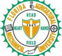 FAMU trustees wrangle with budget, public records
