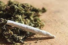 marijuana Marijuana increases likelihood of testicular cancer