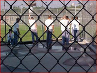 Florida inmates Fewer Florida inmates are re offending after release