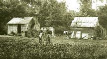 'I WAS A SLAVE': Plantation Life