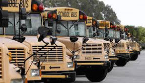 SCHOOL BUSES BCPS Transportation head alleges mismanagement, malfeasance, fraud and abuse; requests outside investigation by law enforcement
