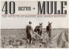 AFRICAN AMERICA OWN African American's own less than 1 percent of farms today