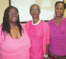The Jan Moran Collier City Learning Library had a successful second annual Pretty in Pink Tea