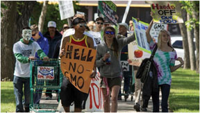 Protesters in 436  cities across the world took to the  streets in a unified charge against agribusiness company and genetically modified foods.