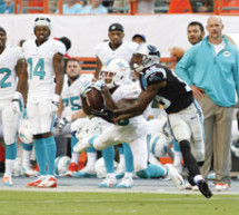 Panthers devour Dolphins in second half 20-16