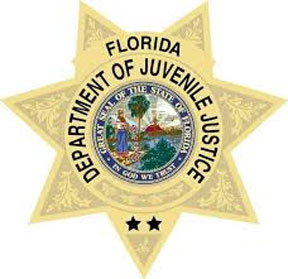 Florida juvenile justice Florida juvenile justice system and Florida Bar dehumanize mother and daughter for four years