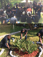 Incoming members of Alpha Phi Alpha Fraternity, Inc., honor their own on Brother's Keeper Day