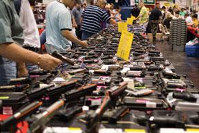 NNPA-US-guns