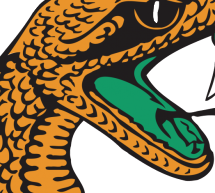 FAMU vs. Delaware State (Homecoming 2015)