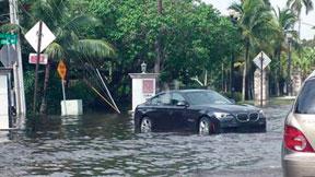 SOUTH-FLOODING