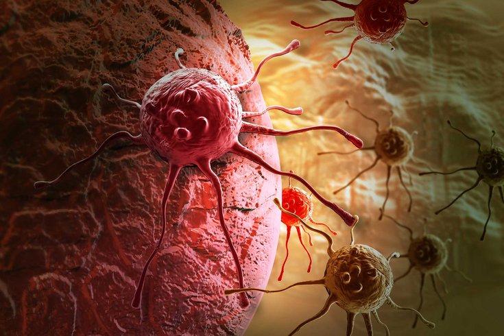 01022015_cancer_-cell_iStock.2e16d0ba.fill-735x490