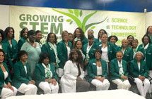 The Fort Lauderdale (FL) Chapter of The Links, Incorporated 2016-2017 Chapter Program accomplishments
