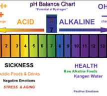 Changes in your diet will lead to a healthier you; learn what alkaline, acidic foods are