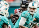 Brandon Doughty Leads the Way For the Miami Dolphins Preseason!