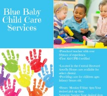 Blue Baby Child Care Services