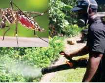 Portions of several cities in Broward to be sprayed for Mosquito Larvae